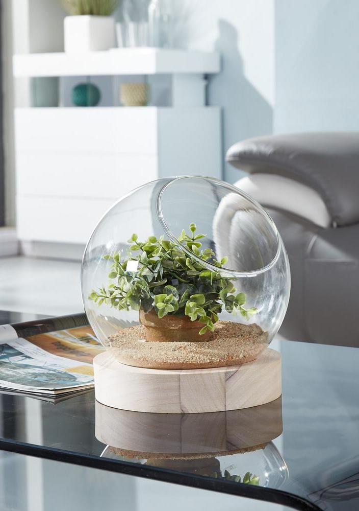 Terrarium with succulents was placed in a privileged location of the house
