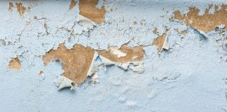 How To Remove Moisture From The Wall: Know Practical Tips