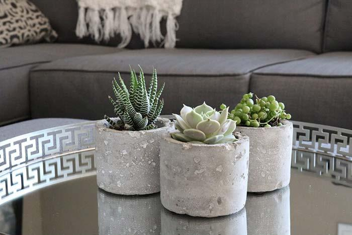 Cement pots with succulents