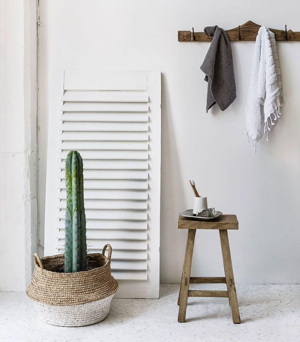 Cacti at home: 60 inspirations to decorate with the 32 plant