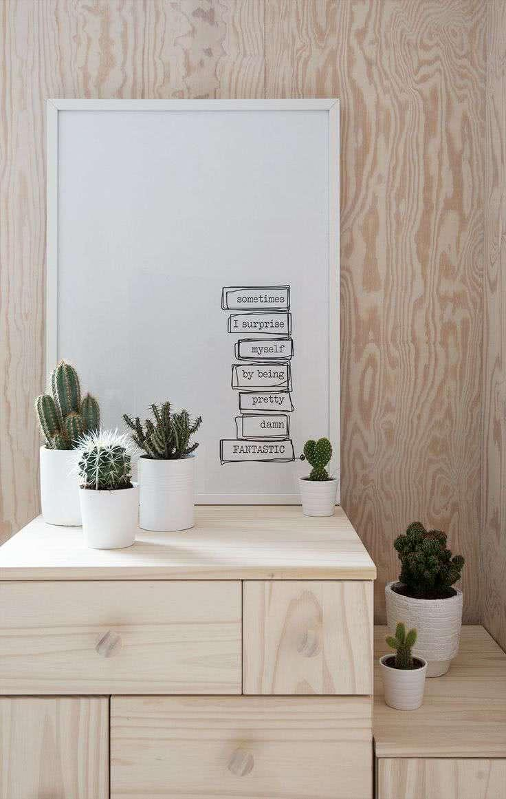 Cacti at home: 60 inspirations to decorate with plant 18