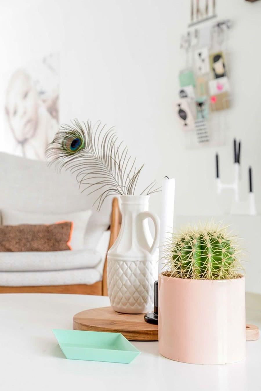 Cacti at home: 60 inspirations to decorate with the plant 36