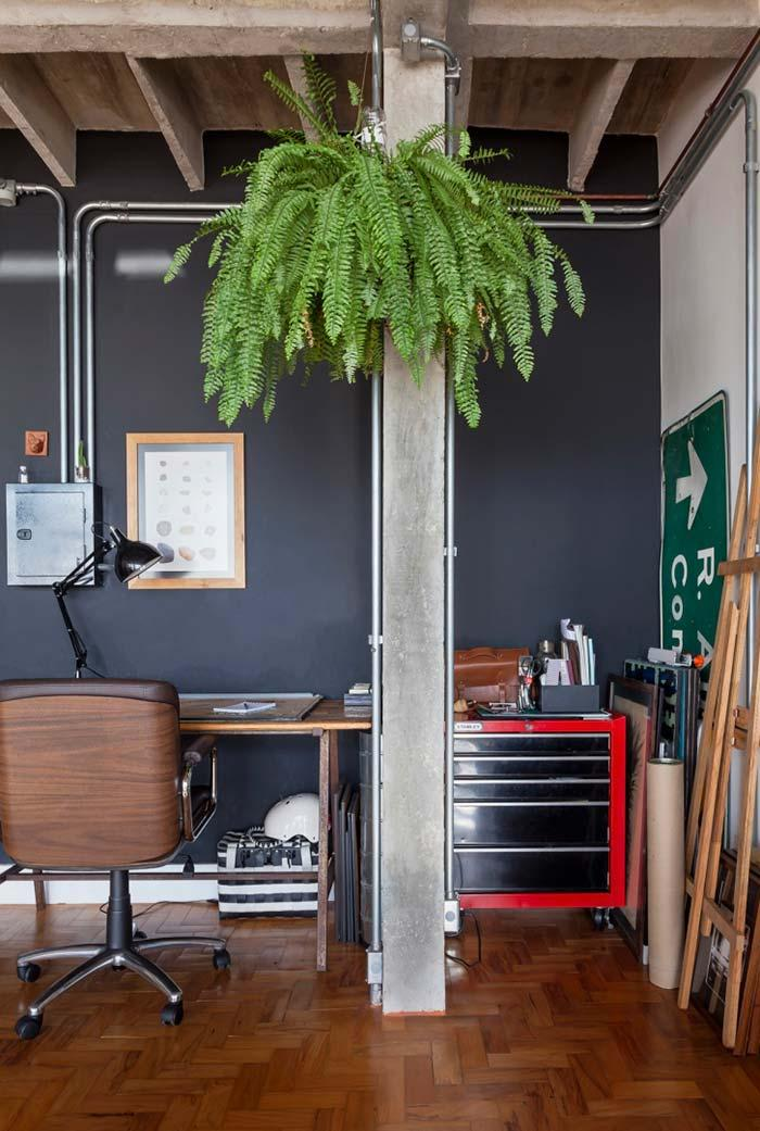 Fern to relax the home office