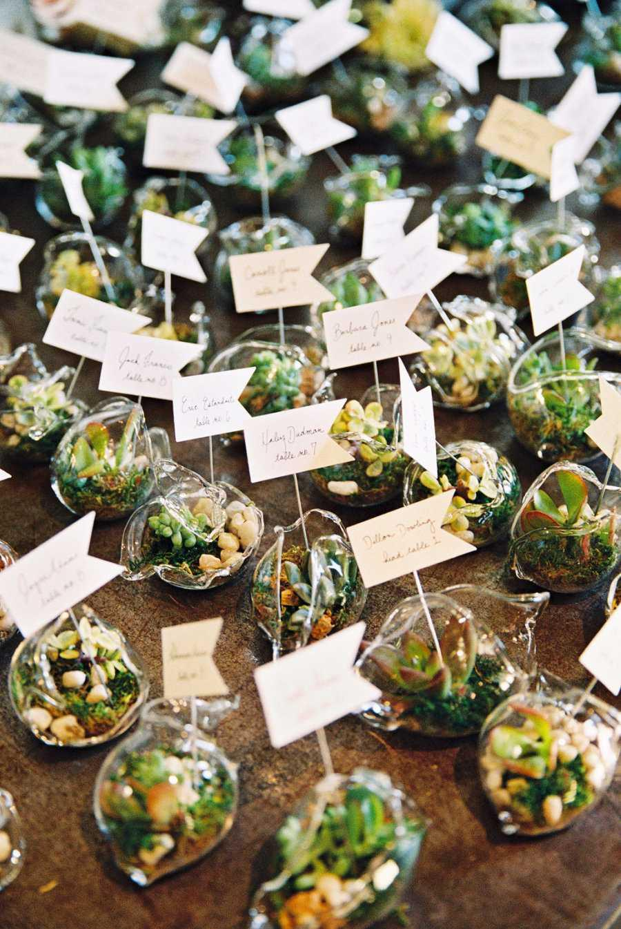Simple and chic: bet on terrariums as souvenirs