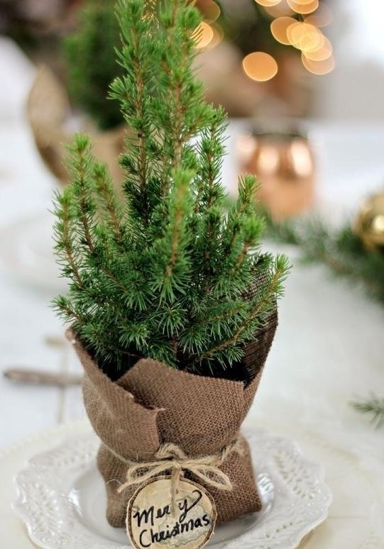 Simple and inexpensive Christmas decoration: 60 perfect ideas to inspire 53