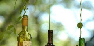 Glass Bottle Craft: 80 Great Tips and Photos