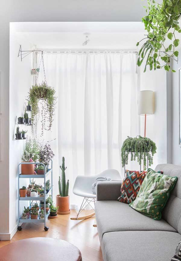 Cushions with vivid colors that combine with plants
