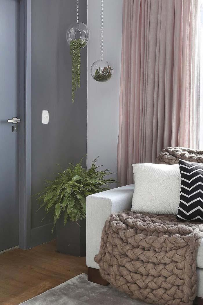 Ferns contrasting the gray of the wall