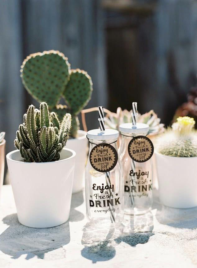 Cacti at home: 60 inspirations to decorate with the 29 plant