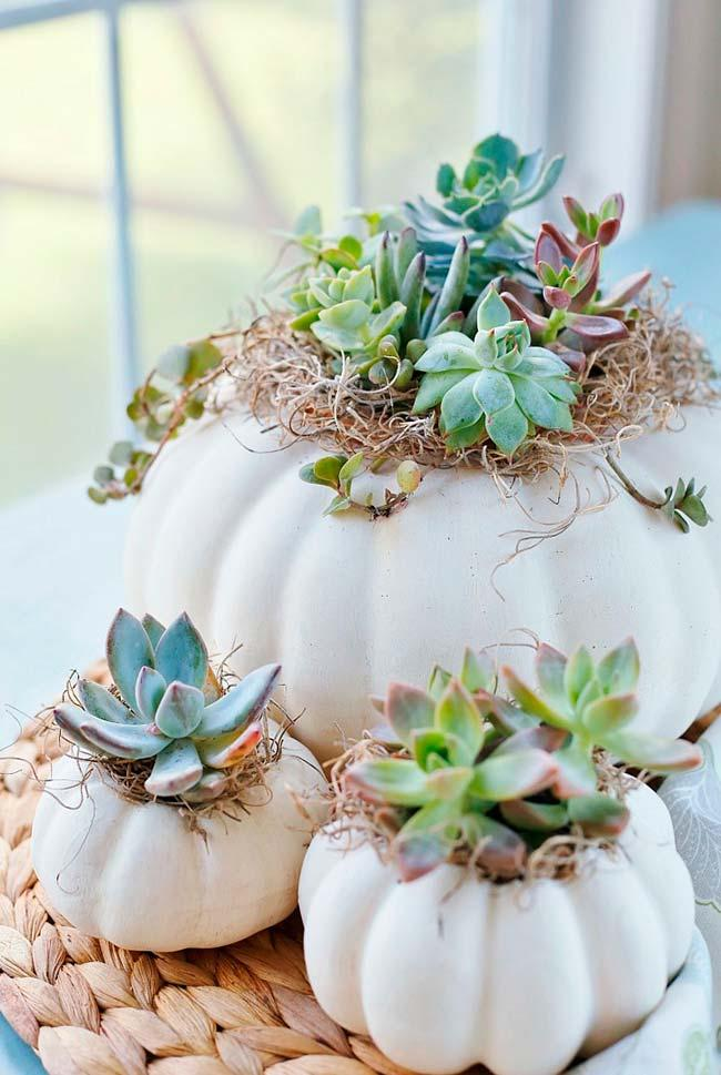 Garlic head shaped vases for succulents