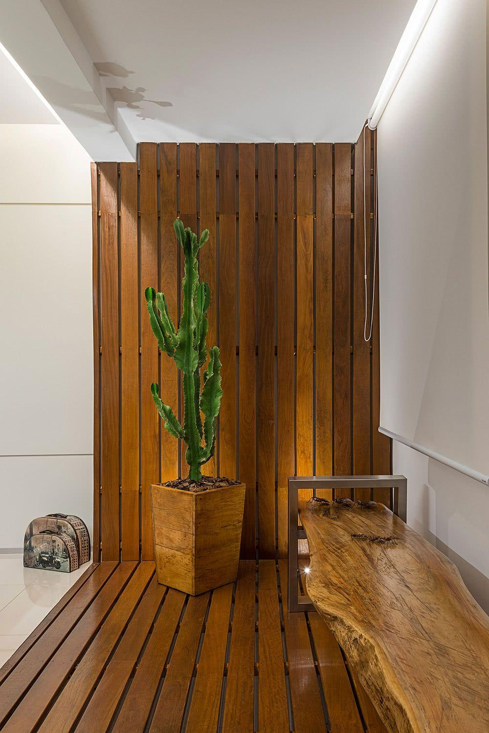 Cacti at home: 60 inspirations to decorate with the 43 plant