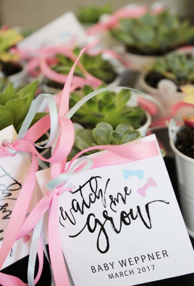 Remembrance of baby shower in celebration of life
