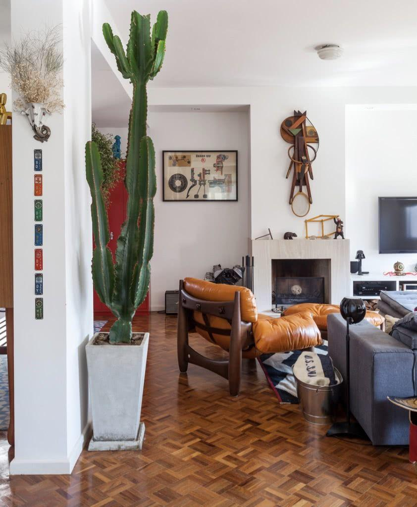 Cacti at home: 60 inspirations to decorate with plant 8