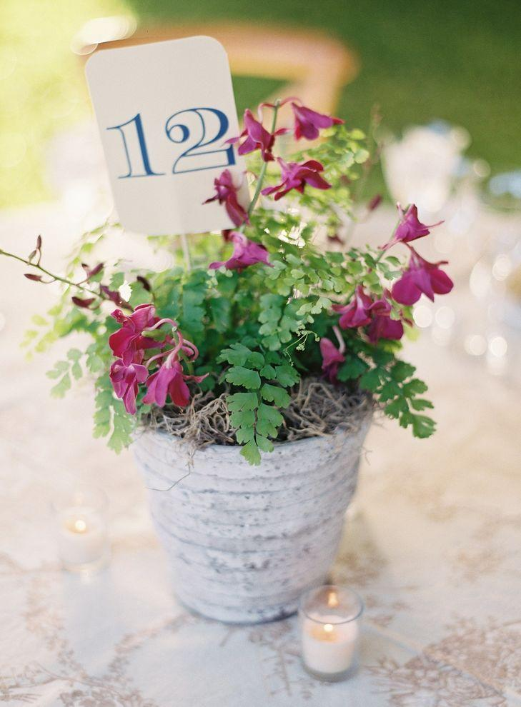Rustic wedding: 80 decorating ideas, photos and DIY 15