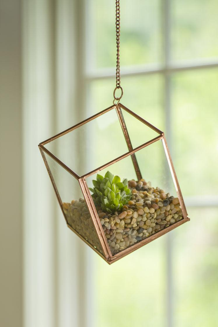 A delicate terrarium made to be suspended from the ceiling