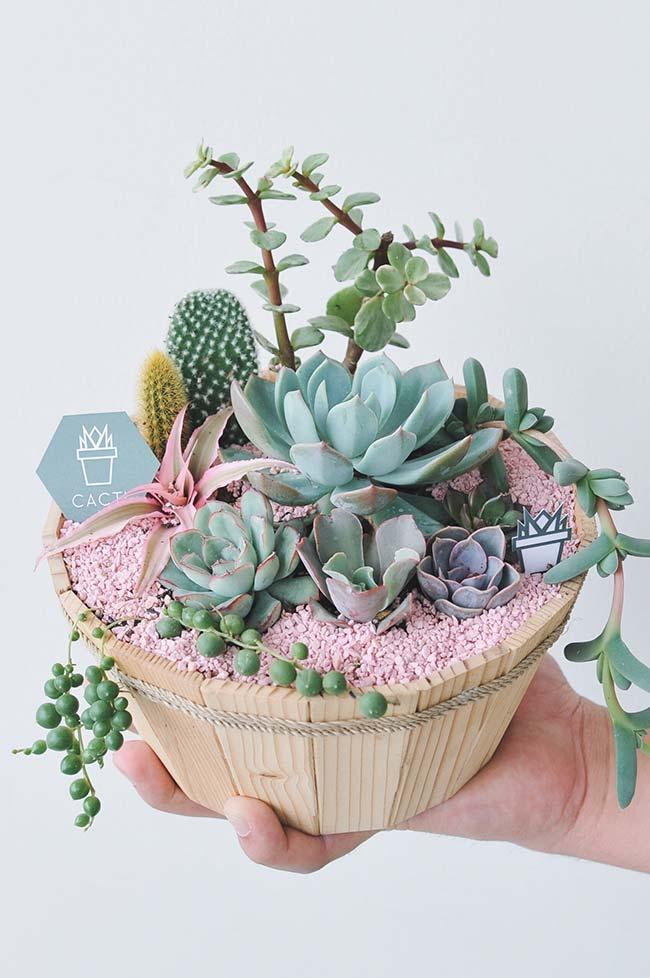 A touch of romanticism for the succulent vessel