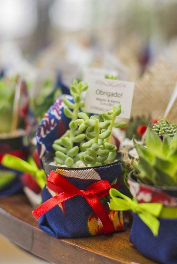 Succulents of the species Sedum Papchyphyllum as party favors