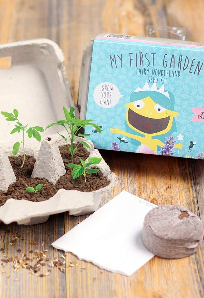 Kit to start the garden in an egg carton