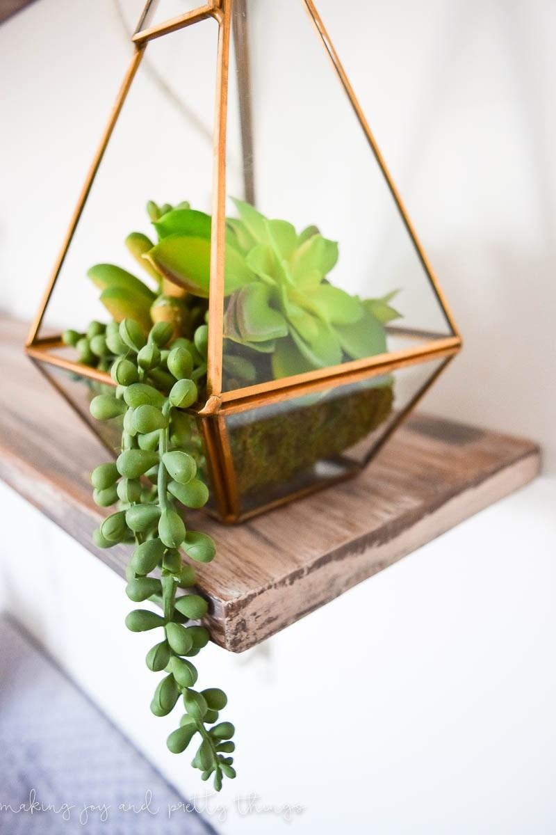 Terrarium with succulent donkey tail
