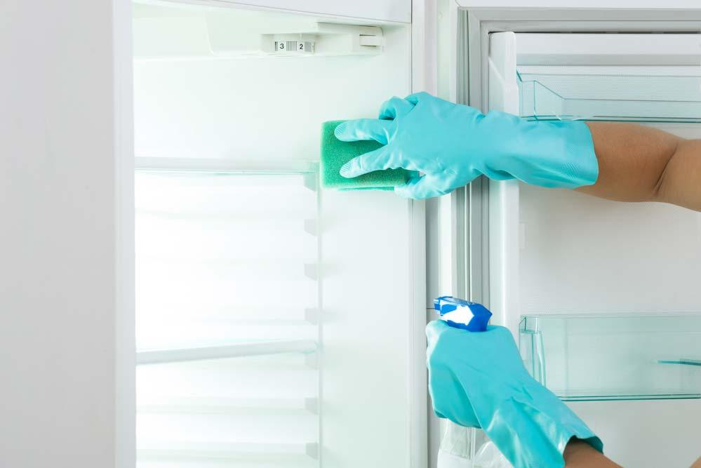 How to organize refrigerator: cleaning