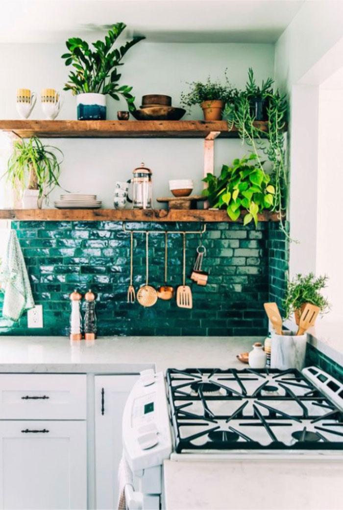 Green kitchen with various plants