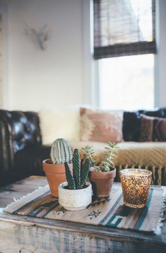 Cacti at home: 60 inspirations to decorate with plant 11