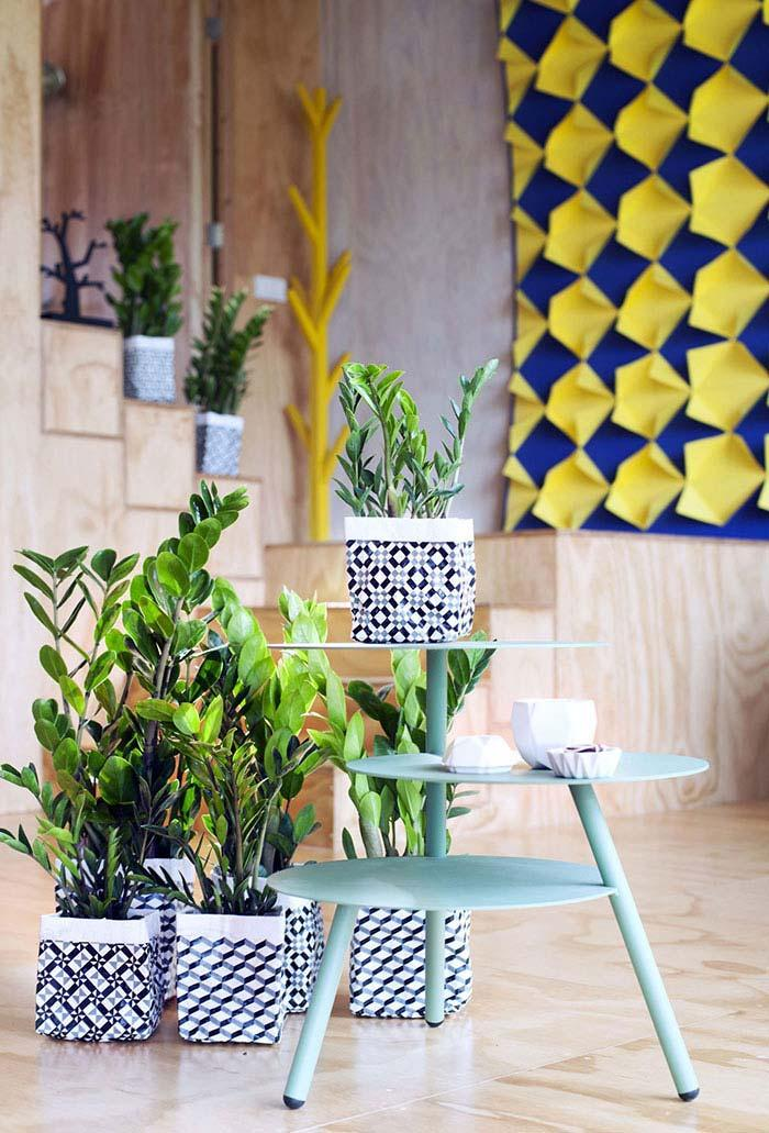Zamioculcas planted in vases of geometric pattern
