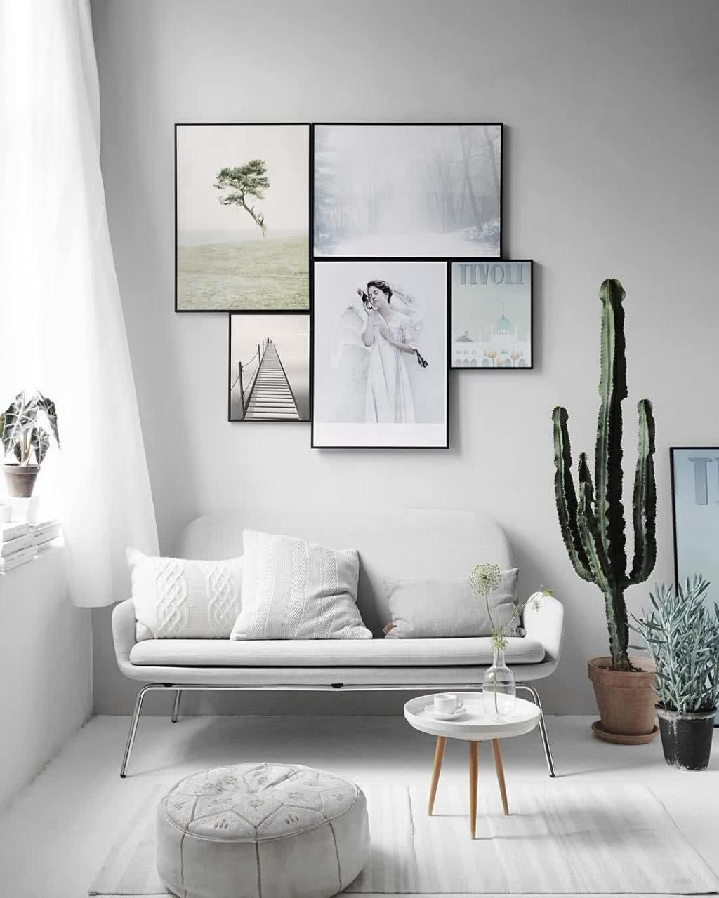 Cacti at home: 60 inspirations to decorate with plant 7