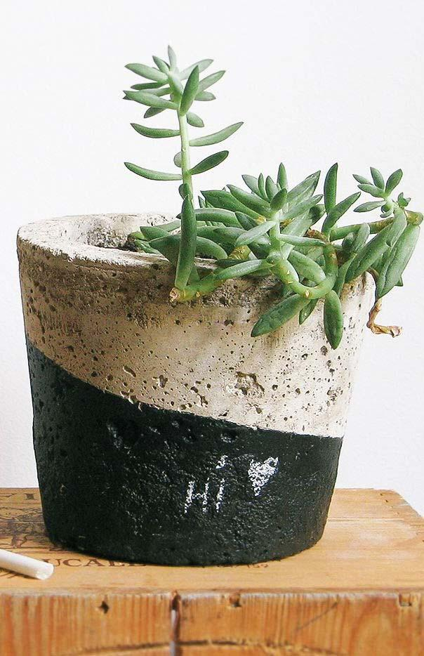 Duo of colors in the cement pot