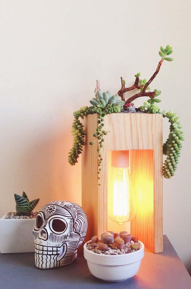 A creative idea: decorate the lamp with succulents