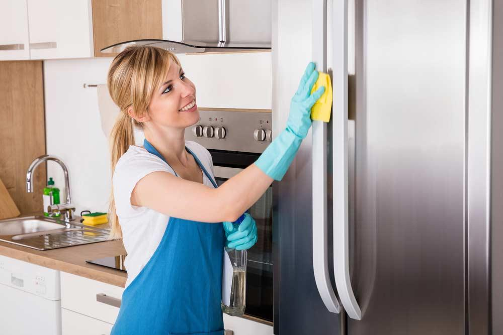 Cleaning the refrigerator from the outside