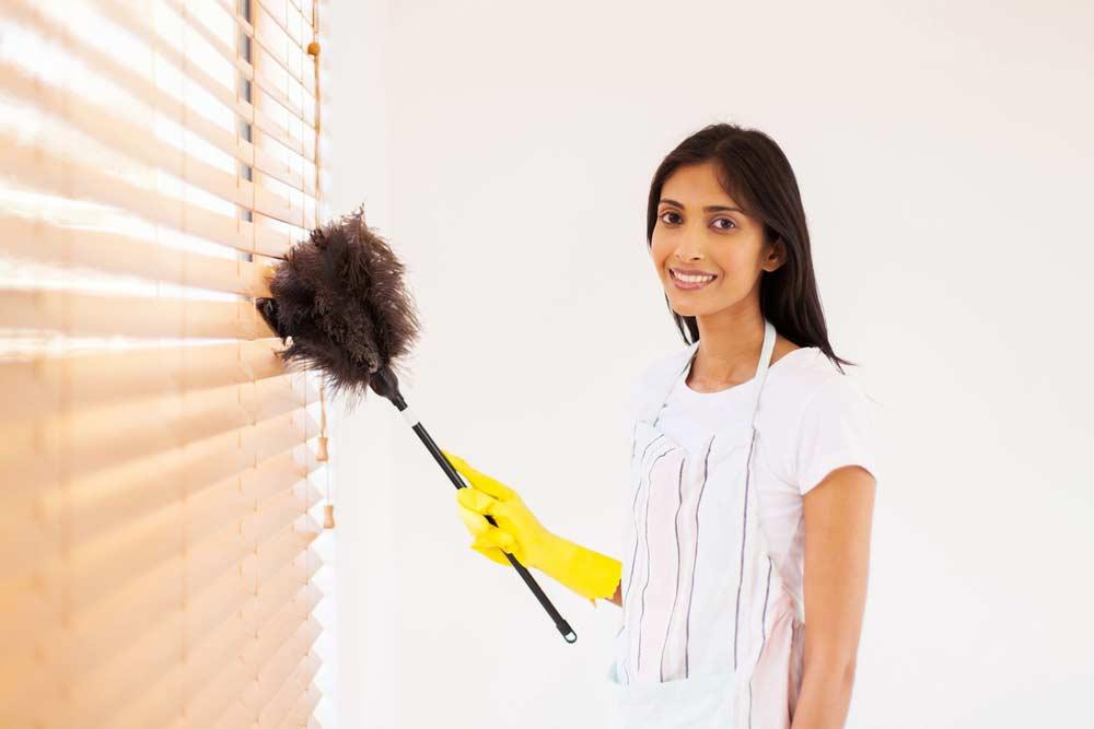 How to Clean Doublevision Blind with Dusters