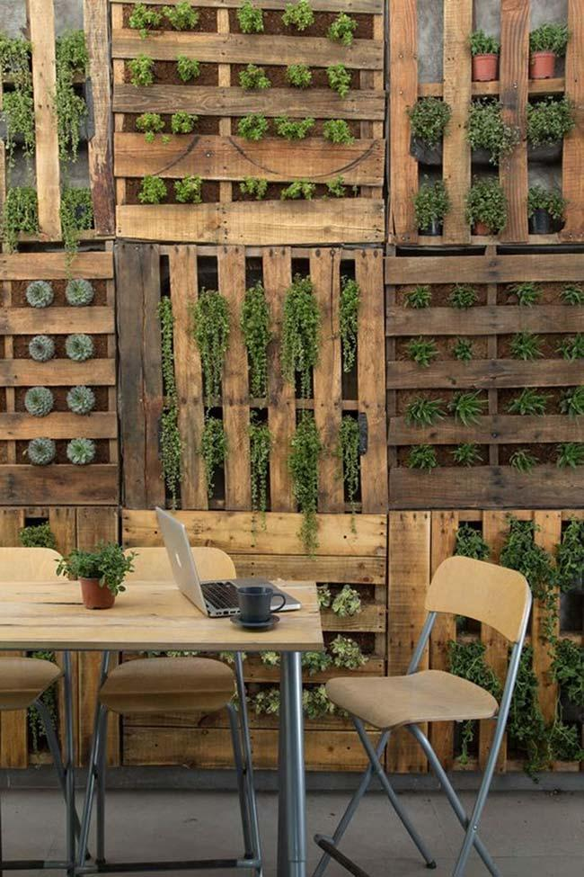 Vertical garden with pallet wall