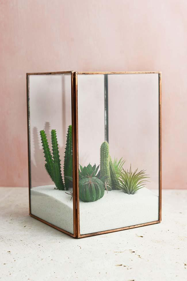 Terrarium of cacti and succulents