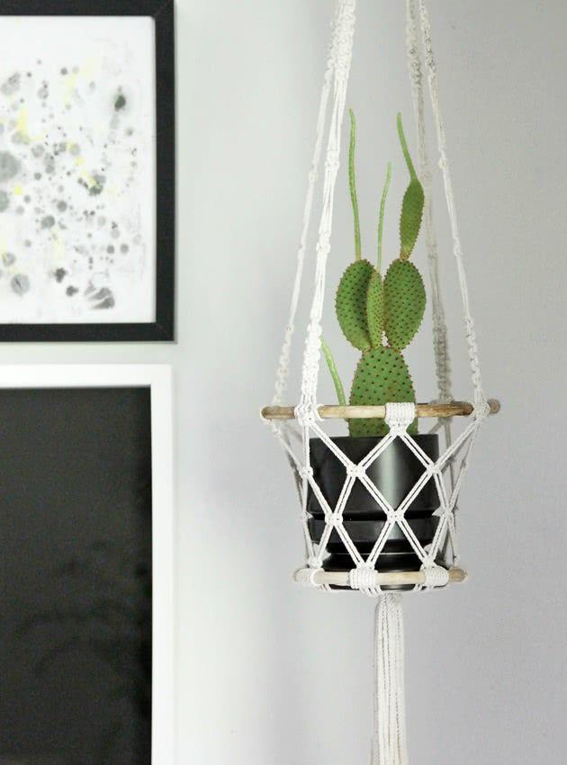 Cacti at home: 60 inspirations to decorate with the plant 47