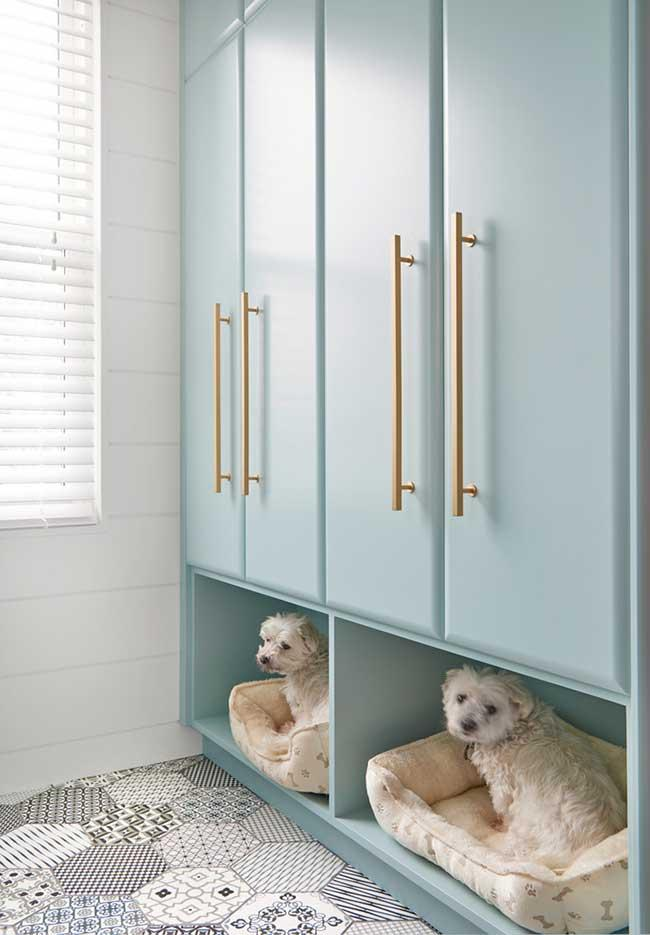 blue cabinet with golden handles