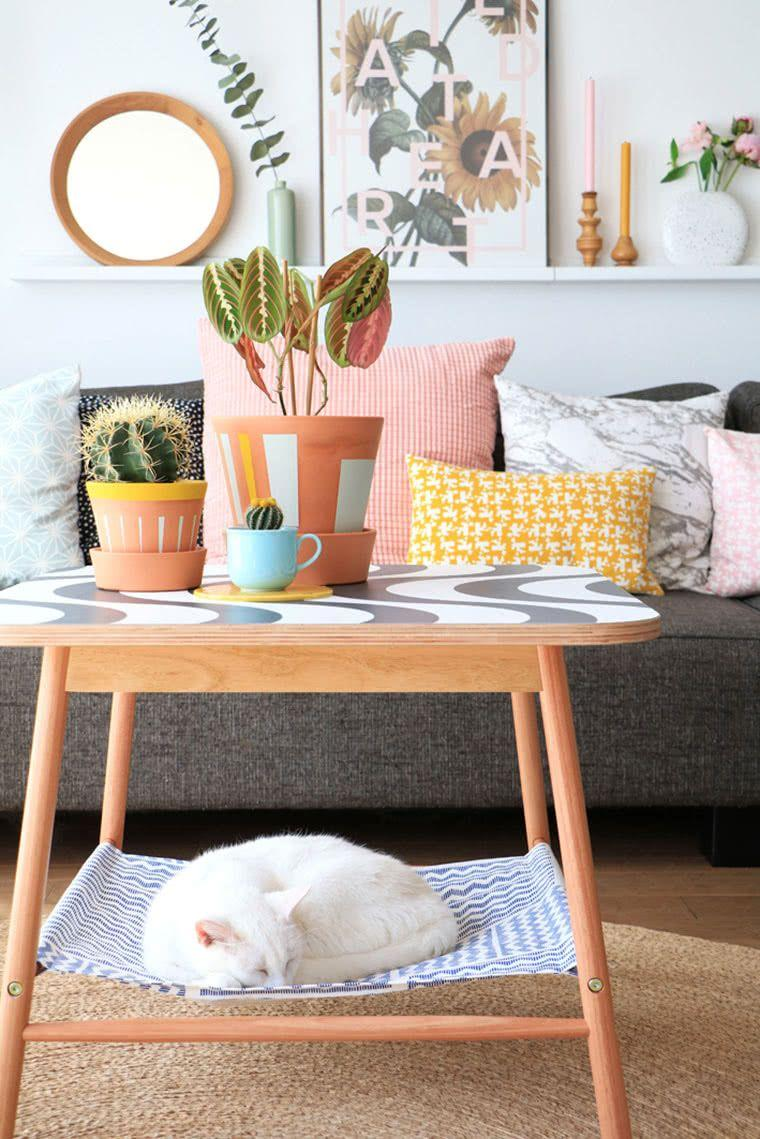 Cacti at home: 60 inspirations to decorate with the plant 28