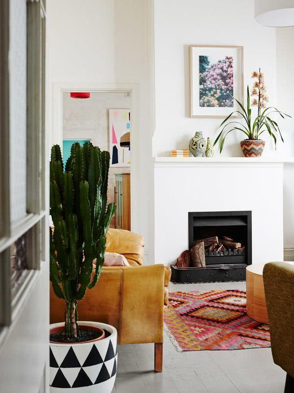 Cacti at home: 60 inspirations to decorate with the 44 plant