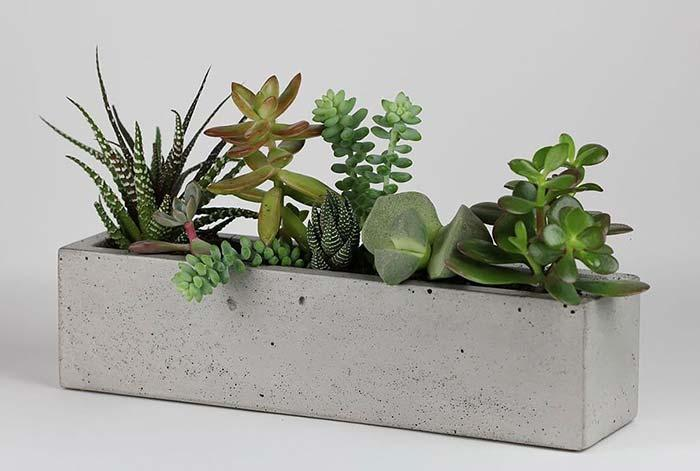 Long cement cup for succulents