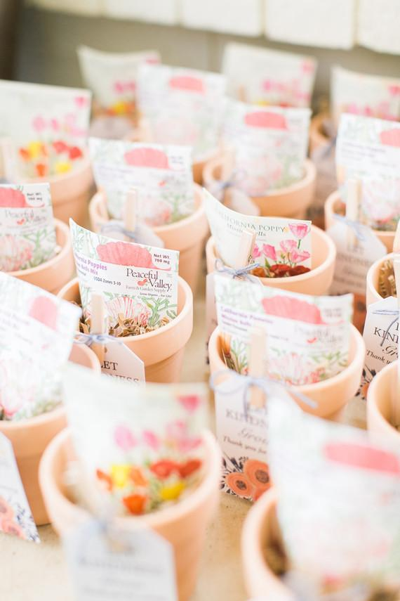 Seeds and vines as souvenirs for 15 years