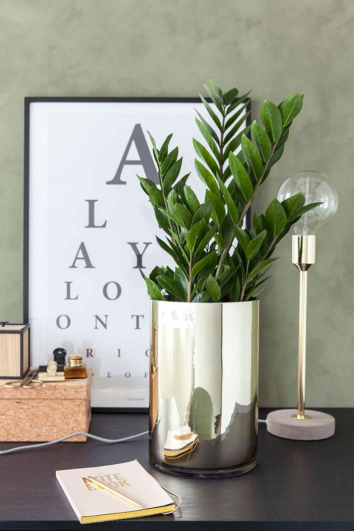 Metal vases with zamioculcas